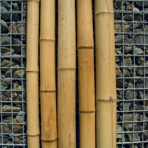 BAMBU NATURAL DECORATIU
